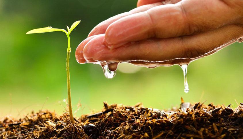 Imagen manos y agua para Evaporación: Solución medioambiental