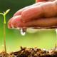 Imagen para Evaporación: Solución medioambiental